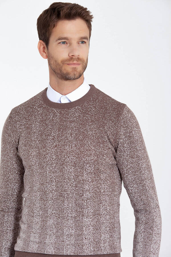 Beige Patterned Crew Neck Brown Sweater